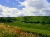 rolling-hills